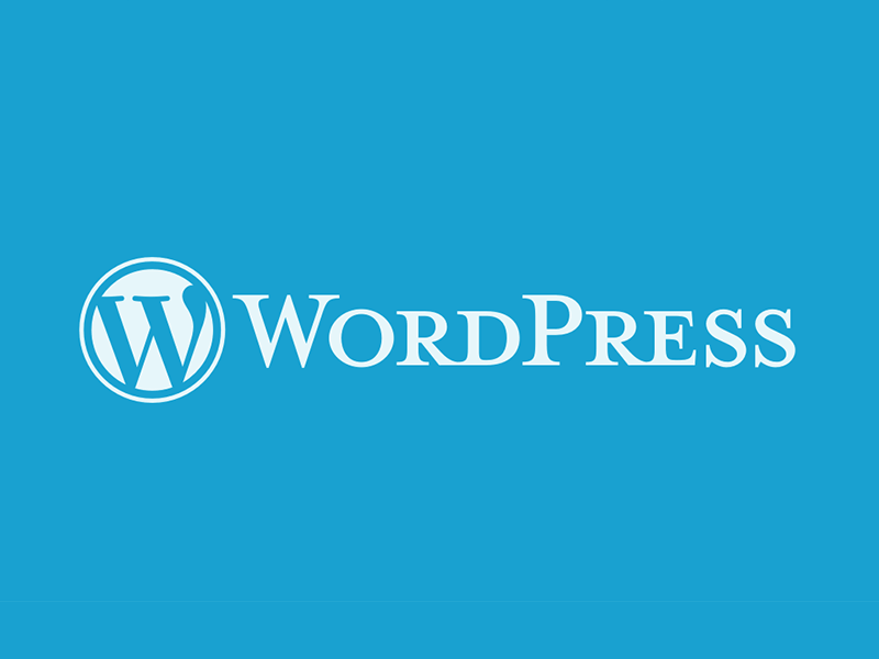總覺得 Wordpress 慢慢的嗎?試試這些提高速度的方法